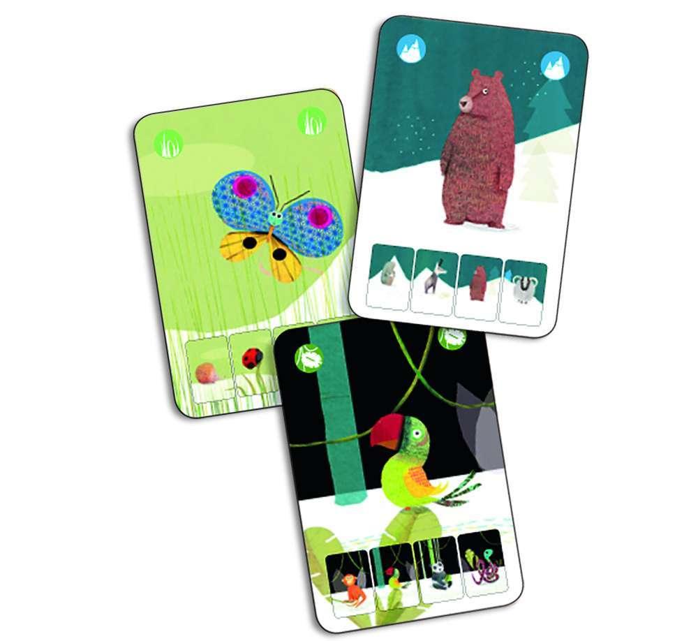 קלפים - מיני טבע