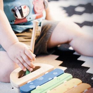 צעצועים מנגנים